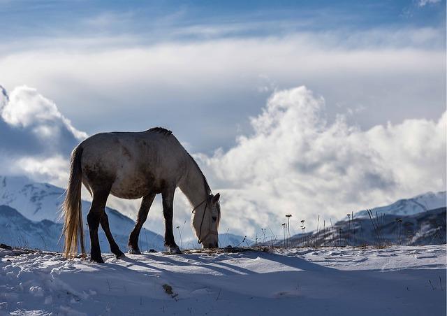 אזרבייג'ן, שלג בהרים